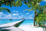 Car Rental French Polynesia