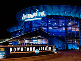 Downtown Aquarium Houston